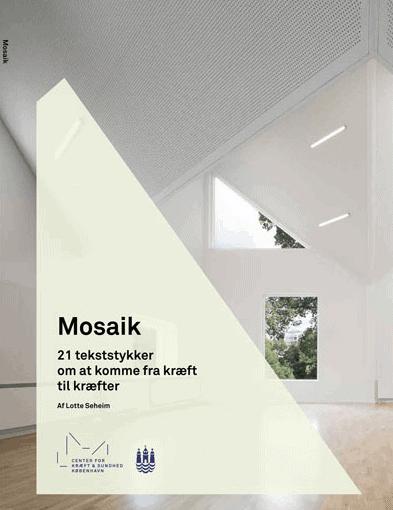 Fortælling om sokratiske dialoggrupper indgår i bogen Mosaik